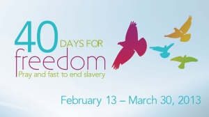 40 Days Freedom TV
